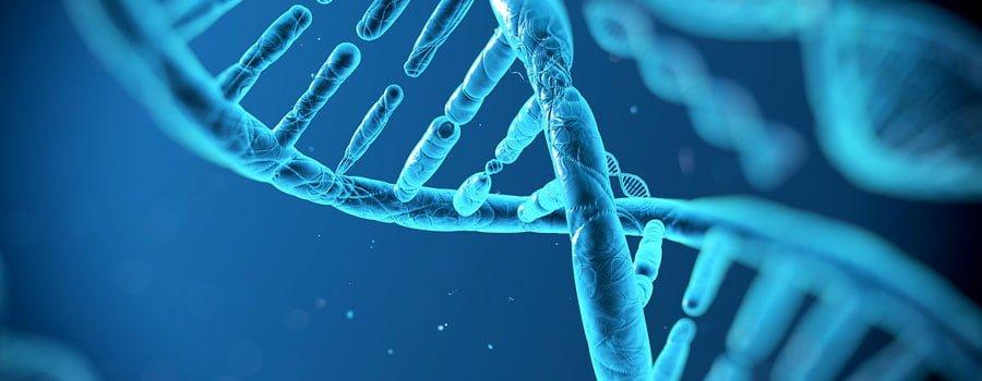 Türkiye'de Genetik Testi Uygulanacak!
