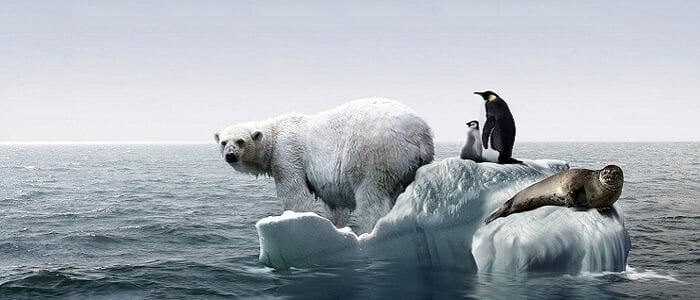 kuresel-isinma-nedir Küresel Isınma Ekonomiyi Kötü Etkileyecek!