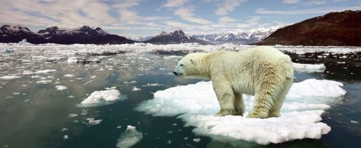 Dünyayı Korkutan Gerçek Dünyayı Korkutan Gerçek! atmosferdeki karbondioksit salinim hizi 66 milyon yillik tarihin en yuksek seviyesinde 705x290