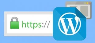WordPress Https Sorunu
