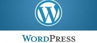WordPress ''OUT OF MEMORY'' Hatası Çözüm Yöntemi