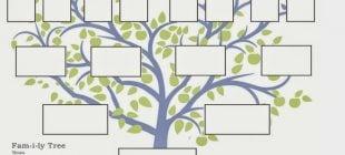 Soy Ağacı Sorgulaması Nasıl Yapılır?