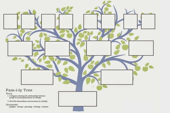 Soy Ağacı Sorgulaması Nasıl Yapılır? soy ağacı sorgulaması Soy Ağacı Sorgulaması Nasıl Yapılır? soy agaci nedir nasil cikarilir ve yapilir 3