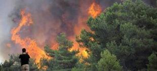 Turizm Cennetinde Büyük Yangın