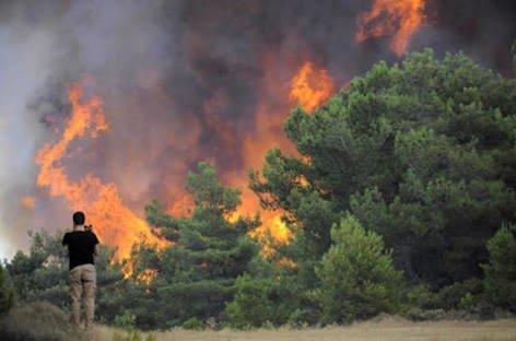 Turizm Cennetinde Büyük Yangın Turizm Cennetinde Büyük Yangın image 4